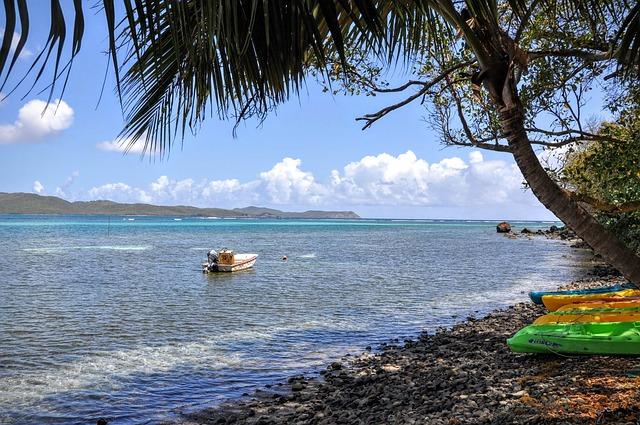 annuaire santé Martinique