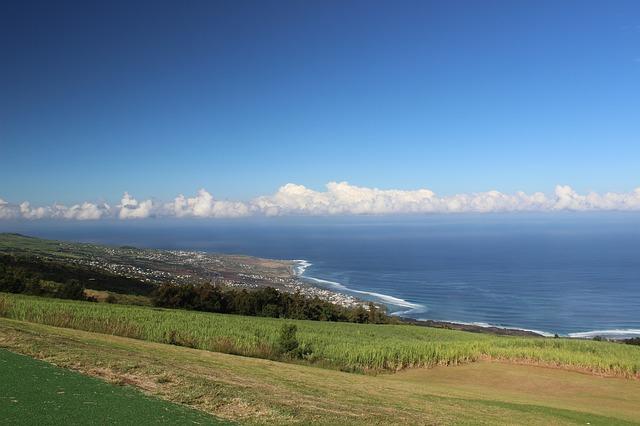 annuaire sante Réunion